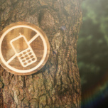 Digital Detox e Digital Addiction, connessioni salutari!